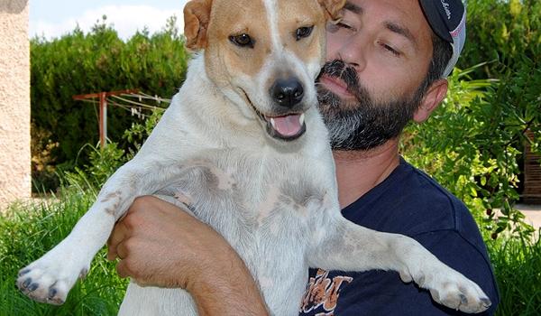 ¿Quieres presentarnos a tu amigo canino? Colabora con nosotros