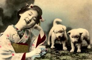 Nihon No Inu (Perros de Japón)